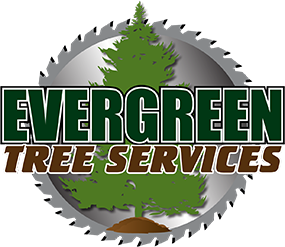 Evergreen Tree Services